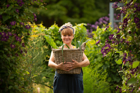 Portrait happy woman with basket of harvested vegetables in garden