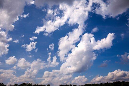 Clouds in summer sky.