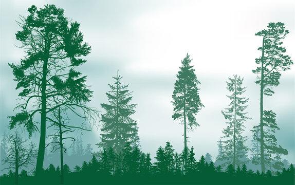 green forest on light sky background