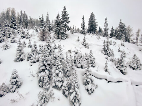 Winter landscape in Steamboat Springs Colorado