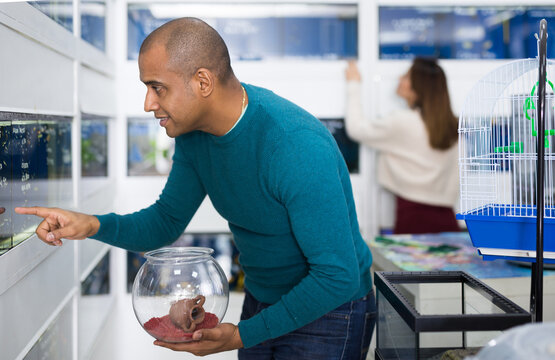 Young adult man choosing fish for small home aquarium while shopping in pet store