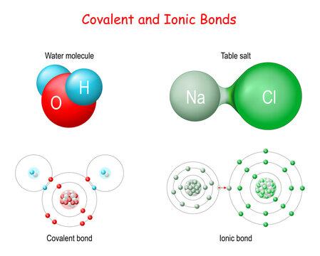 Ionic vs Covalent Bonds.