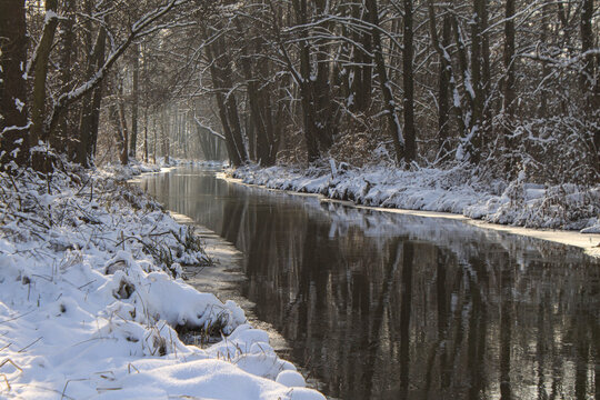Märchenhafter Spreewald im Winter; Spreearm bei Leipe