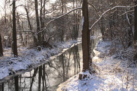 Romantische Winterlandschaft im Spreewald; Spreearm bei Leipe
