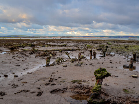 Contorted pieces or iron show through the mud - Skern near Appledore, North Devon, England.