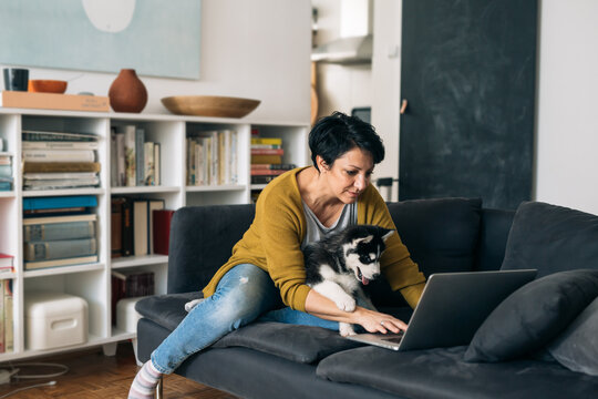 woman using laptop computer while sitting on a sofa in her living room in a company of her dog