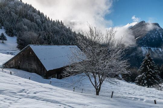 Paysage en hiver du Massif des Bauges ,  avec ses chalets , Savoie , France