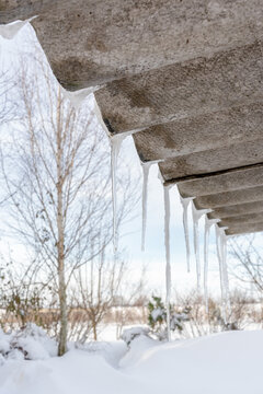 Long icicles on the edge of the slate