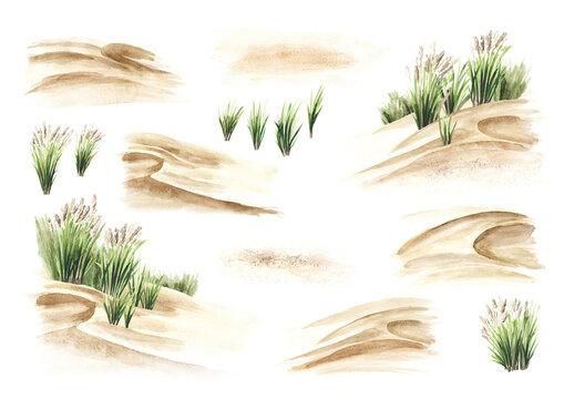Coastal dune, sea grass set. Hand drawn watercolor illustration isolated on white background