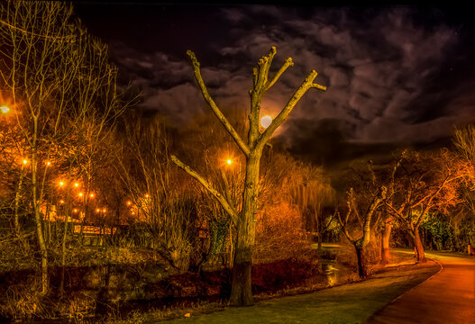Trees lining the banks of the River Welland in Market Harborough, UK with the clouds backlit by a full moon