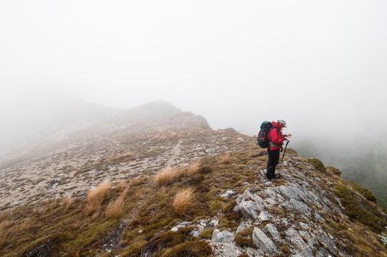 Woman walker navigating in cloudy weather, Kahurangi National Park, New Zealand.
