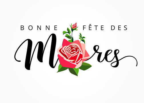 Happy Mothers day - Bonne fete des Meres elegant hand drawn french lettering banner. Calligraphy vector text and rose on white background for Mother's Day