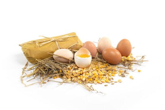 uova di campagna