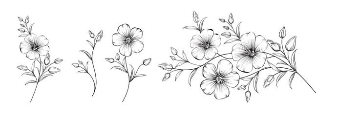 Fototapeta Set of differents flower linen on white background.