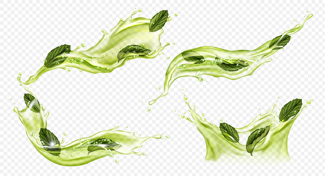 Vector realistic splash of green tea or matcha