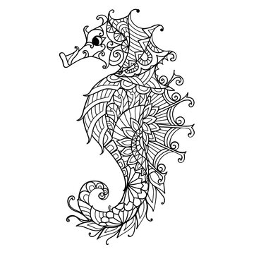 Seahorse for coloring book, coloring page for adult or print on product. Vector illustration