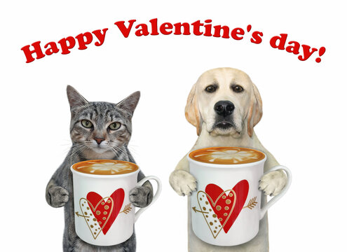Two pets drink latte. Happy Valentine's day. White background. Isolated.