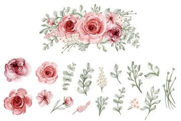 Fototapeta set of isolated flower leaves floral watercolor