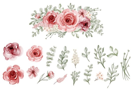 set of isolated flower leaves floral watercolor