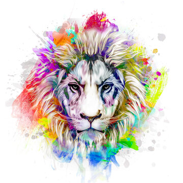 lion head with creative abstract elements on colorful background