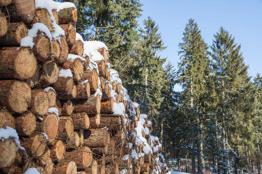 winter_woodpile