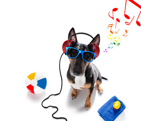 dj disco dancing music dog on summer vacations