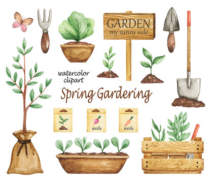 Spring Gardening clipart, Garden tools set, Garden elements, Watercolor garden clipart, seeds, plants in pots, shovel