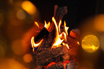 Wood logs burning in fireplace close up