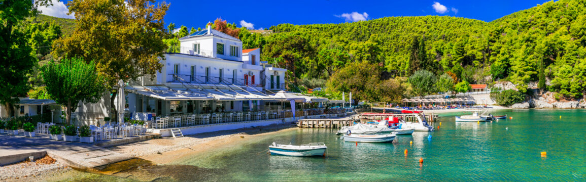 Best of Skopelos island - Picturesque fishing village Agnontas, with traditional tavernas on the beach. Sporades, Greece