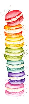 Watercolor style macaroons