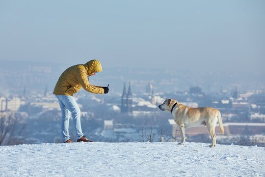 Pet owner taking photo of his labrador retriever via smart phone during frosty day. Young man with dog in winter against urban skyline. Prague, Czech Republic