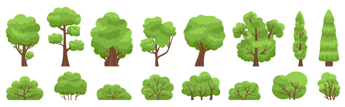 Green trees. Forest or garden bush and tree, woody foliage green branches. Nature forest and park green trees vector illustration set. Bush green and trees environment shape