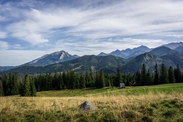 Fototapeta Sunny glade - Rusinowa Polana, Tatra Mountains, Poland obraz