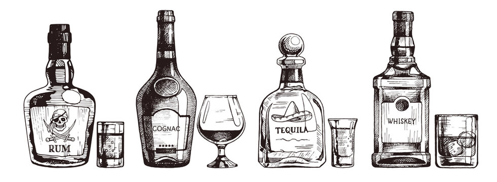 Hand drawn set of alcoholic drinks. Bottle of rum, cognac, tequila, whiskey. Vector beverage illustration, ink sketch