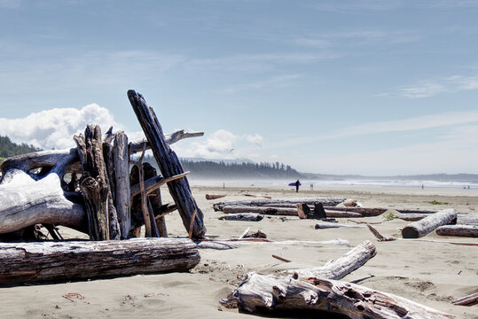 A shelter made from driftwood found on Long Beach near Tofino, Vancouver Island