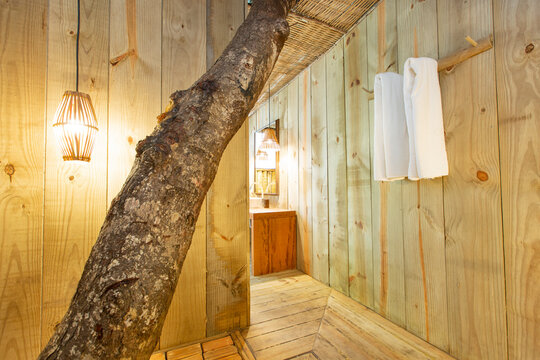 Modern luxury summer holiday or vacation wooden beach house bathroom entrance interior with a living tree log inside it.