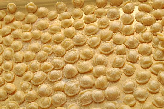 orecchiette pasta food