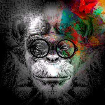 portrait of a monkey. Evolution concept