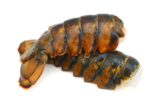 Raw lobster tail