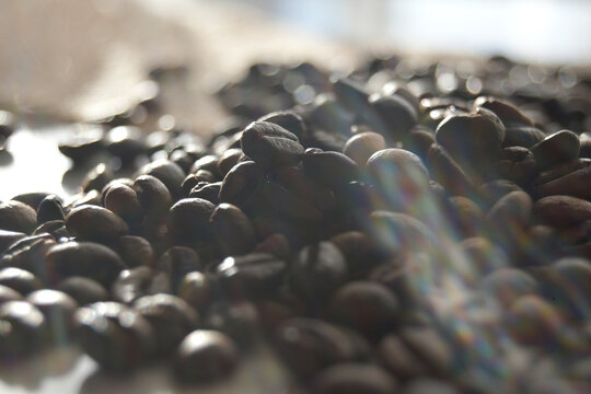Coffee bean on a table