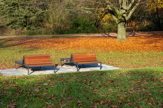 Zwei Holzbänke in einem Park