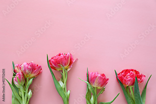 Fresh flower composition, bouquet of pink peony tulips, isolated on paper textured background. International Women's day, mother's day greeting concept. Copy space, close up, top view, flat lay.