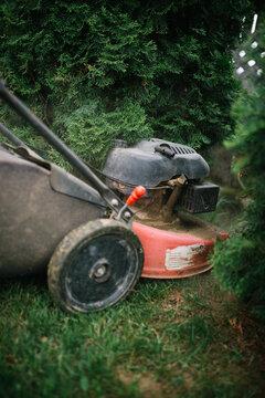 Lawn mowing in progress in the garden closeup.