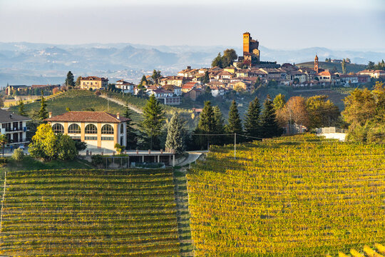 The village of Serralunga d'Alba with its castle and vineyards, Langhe, Piedmont, Italy
