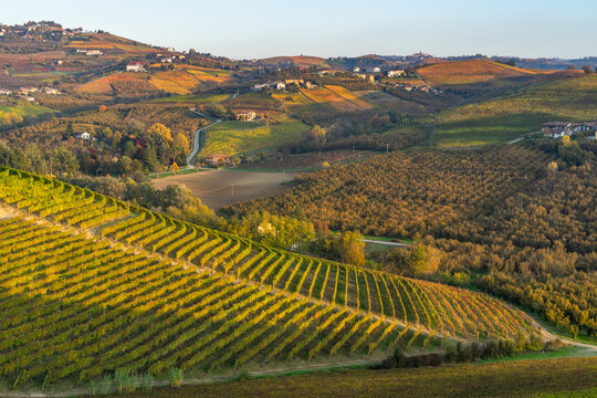 Beautiful autumn landscape among the vineyards of Langhe, Piedmont, Italy