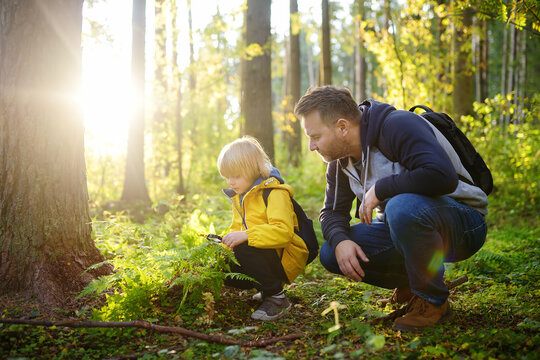 School boy and his father hiking together and exploring nature with magnifying glass. Child with his dad spend quality family time together in the sunny summer forest.