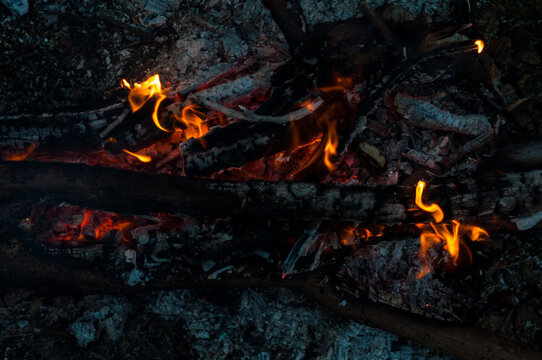 Background bonfire close-up, burning wood, small bright flame fire. Hot red-orange coals from burnt wood. Summer camping in nature