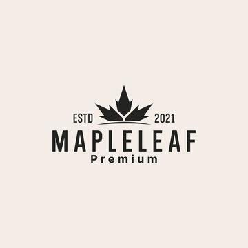 maple leaf canada logo design vector