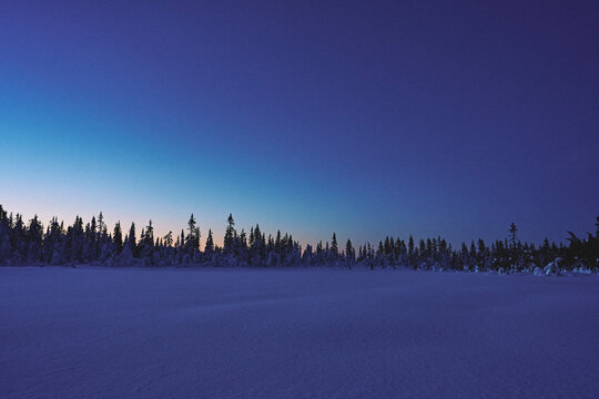 Snow covered marshlands in late evening up in the Totenåsen Hills, Norway.