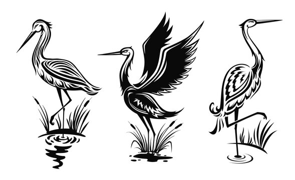Heron or wader birds vector icons, black hern silhouettes stand in swamp water with reeds. Egrets with ornate body wading in marsh side view, tattoo design emblems isolated on white background set